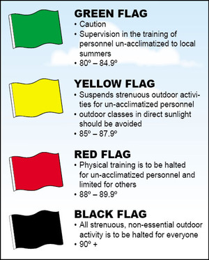 Flags weather condition